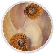 Two Nautilus Shells Round Beach Towel