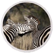 Round Beach Towel featuring the photograph Two Plains Zebra Botswana by Liz Leyden