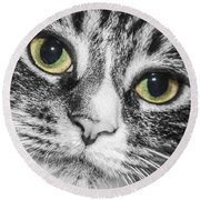 Two Toned Cat Eyes Round Beach Towel by Jeannette Hunt