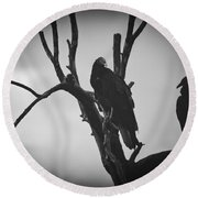 Round Beach Towel featuring the photograph Two Vultures by Bradley R Youngberg