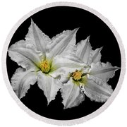 Two White Clematis Flowers On Black Round Beach Towel by Jane McIlroy