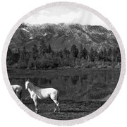 Two White Horses By A Pond Round Beach Towel