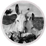 Two White Irish Donkeys Round Beach Towel