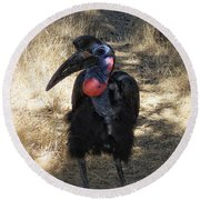 Ugly Bird Ball Round Beach Towel by Donna Blackhall