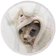 Unamused Round Beach Towel by Jeannette Hunt