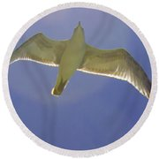 Under His Wings IIi Round Beach Towel