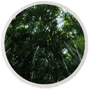 Under The Bamboo Haleakala National Park  Round Beach Towel by Vivian Christopher