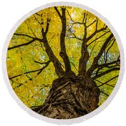 Under The Yellow Canopy Round Beach Towel