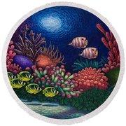 Undersea Creatures Vi Round Beach Towel