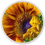 Unfurling Beauty Round Beach Towel