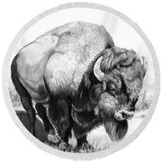 Up Close And Personal With Bison Round Beach Towel by Cheryl Poland
