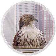 Round Beach Towel featuring the photograph Urban Red-tailed Hawk by Rona Black