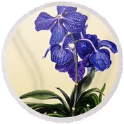 Vanda Sausai Blue Orchid Round Beach Towel