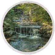 Round Beach Towel featuring the photograph Vaughan Woods Stream by Jane Luxton