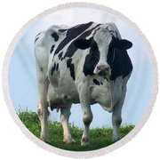 Round Beach Towel featuring the photograph Vermont Dairy Cow by Eunice Miller