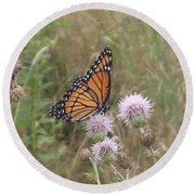 Viceroy On Thistle Round Beach Towel by Robert Nickologianis
