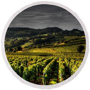 Round Beach Towel featuring the photograph Vines In France by Tom Prendergast