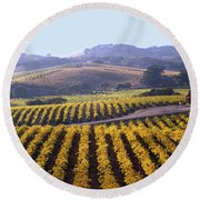 6b6386-vineyard In Autumn Round Beach Towel