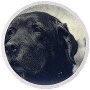 Vintage Black Lab Round Beach Towel by Eleanor Abramson