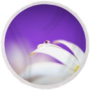 Violet Daisy Dreams Round Beach Towel