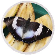 Violet-spotted Charaxes Butterfly Round Beach Towel