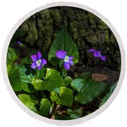 Violets Round Beach Towel by Dorothy Cunningham