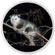 Virginia Opossum Round Beach Towel