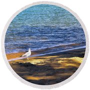 Visitor - Lake Tahoe Round Beach Towel