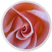Vivacious Pink Rose Round Beach Towel