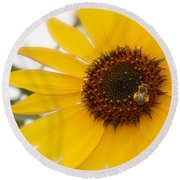 Round Beach Towel featuring the photograph Vivid Sunflower With Bee Fine Art Nature Photography  by Jerry Cowart