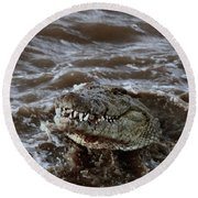 Voracious Crocodile In Water Round Beach Towel