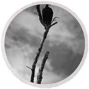 Vulture Silhouette Round Beach Towel