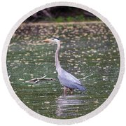 Round Beach Towel featuring the photograph Wading Crane by Susan  McMenamin