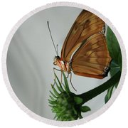 Butterfly Waiting On The Wind  Round Beach Towel by Cathy Harper