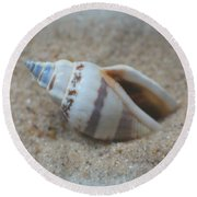 Washed Ashore Seashell Treasure Round Beach Towel