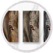 Watchful Triptych Round Beach Towel