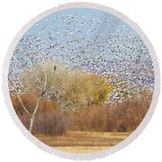 Round Beach Towel featuring the photograph Watching Over The Flock by Bryan Keil