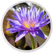 Round Beach Towel featuring the photograph Water Flower 1004d by Marty Koch