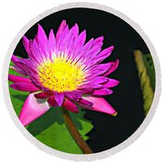 Round Beach Towel featuring the photograph Water Flower 10089 by Marty Koch