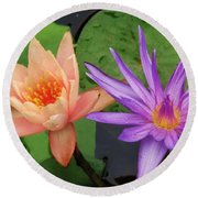 Water Lilies 011 Round Beach Towel
