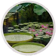 Round Beach Towel featuring the photograph Water Lilies And Platters And Lotus Leaves by Byron Varvarigos