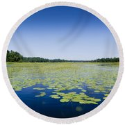 Water Lilies Round Beach Towel by Gary Eason
