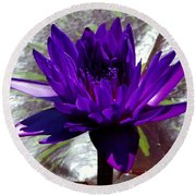 Water Lily 008 Round Beach Towel
