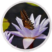 Water Lily And Swallowtail Butterfly Round Beach Towel
