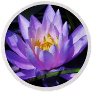 Water Lily Blues Round Beach Towel by Sherman Perry