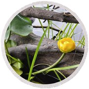 Round Beach Towel featuring the photograph Water Lily by Cathy Mahnke