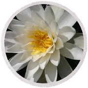 Round Beach Towel featuring the photograph Water Lily  by Denyse Duhaime