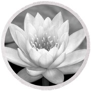 Water Lily In Black And White Round Beach Towel