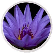 Round Beach Towel featuring the photograph Water Lily Photo by Meg Rousher