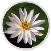 Round Beach Towel featuring the photograph Water Lily by Sergey Lukashin